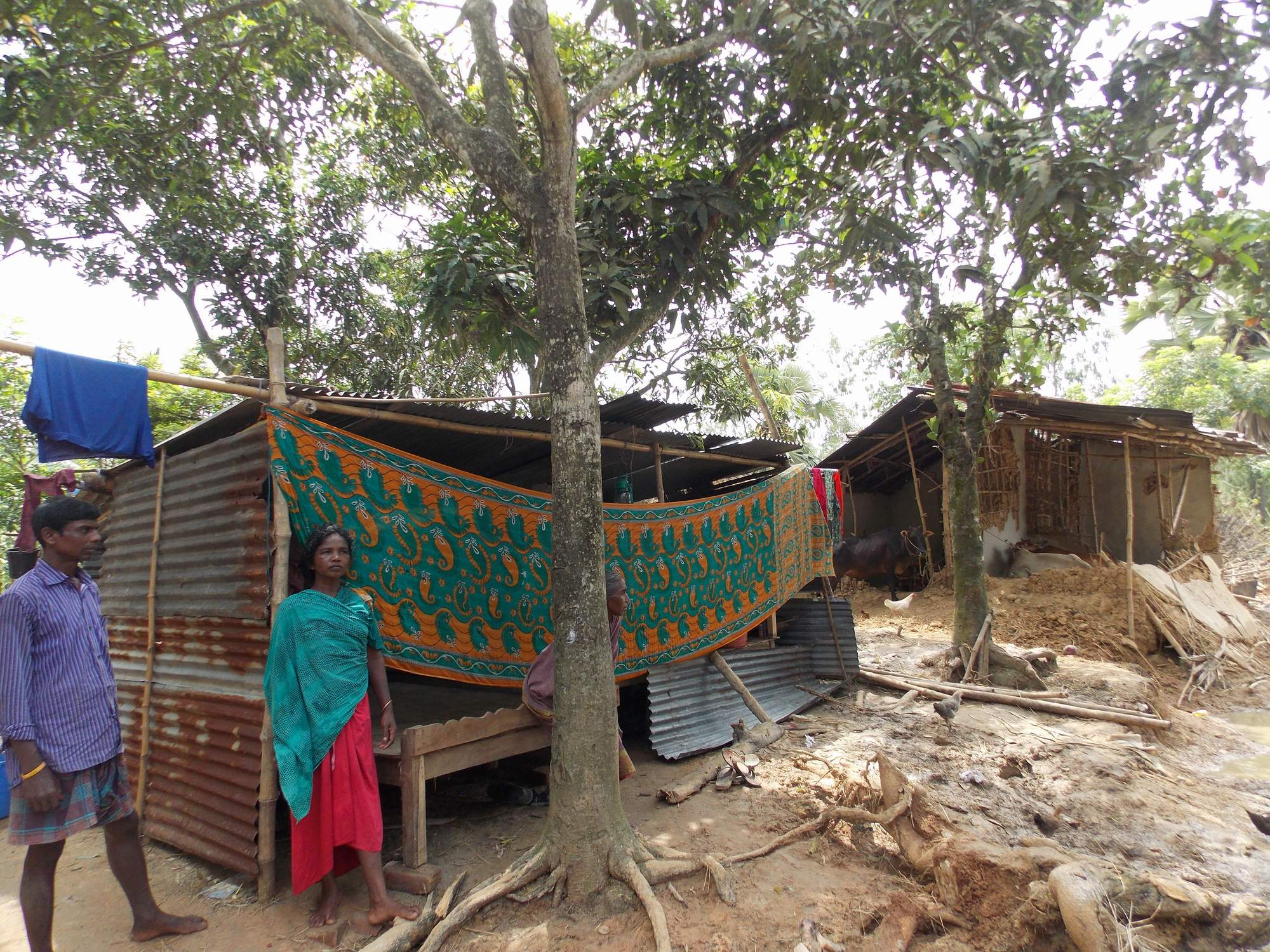 A adivasi woman onfron of her tamporary house001