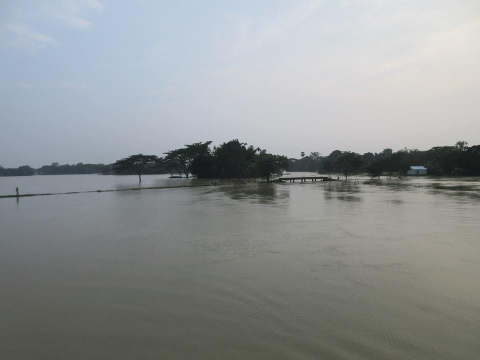 Dhobaura11