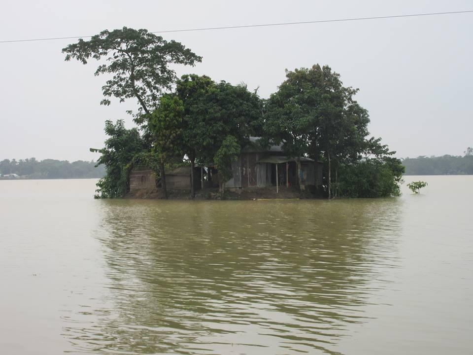 Dhobaura19