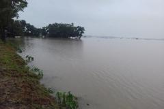 Dhobaura16