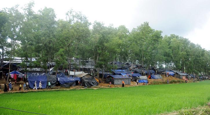 Barbed wire (Rohingya refugees-) (16)